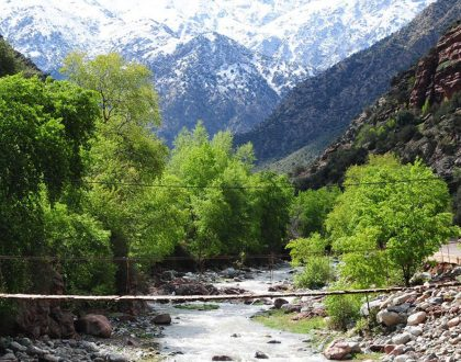 Ourika Valley day trip | Marrakech Tours Specialist