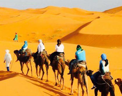 Camel Treks Sahara Desert Erg Chebbi   Marrakech Tours Specialist