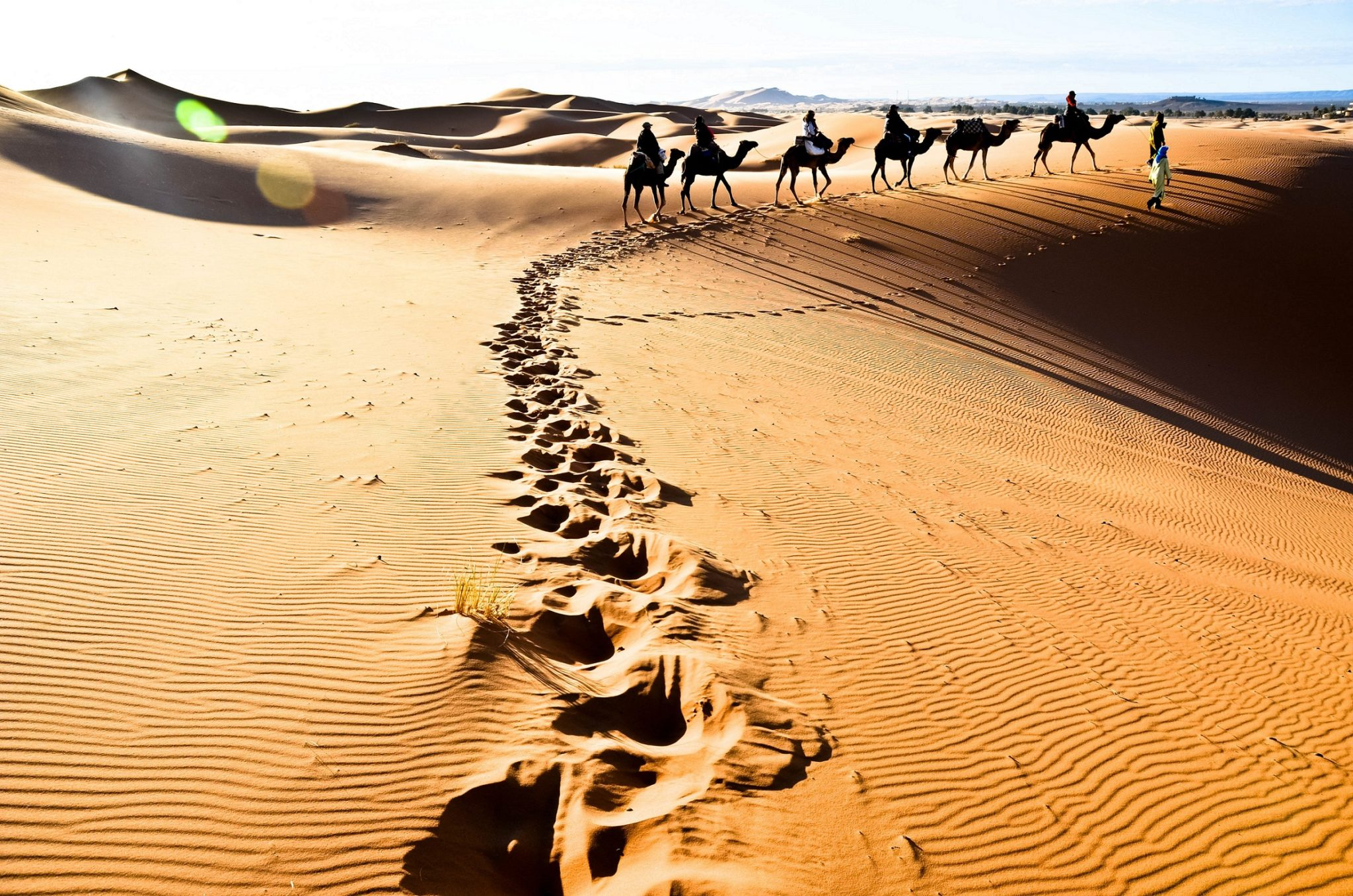 Desert tour   Marrakech Tours Specialist